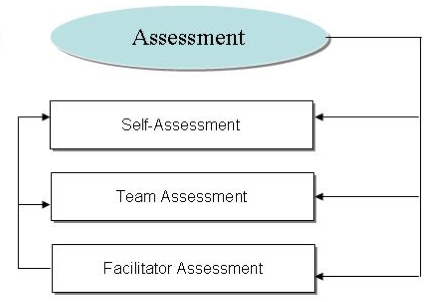 Assessment Scaffold Flow Chart Self Team Facilitator
